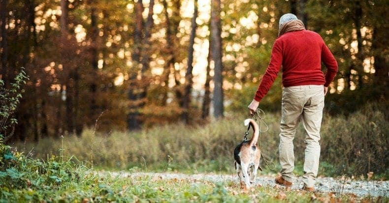 The Effect of Back Pain on Walking   Connecticut Disc and Laser Therapy Centers   Dr. James J. Dalfino